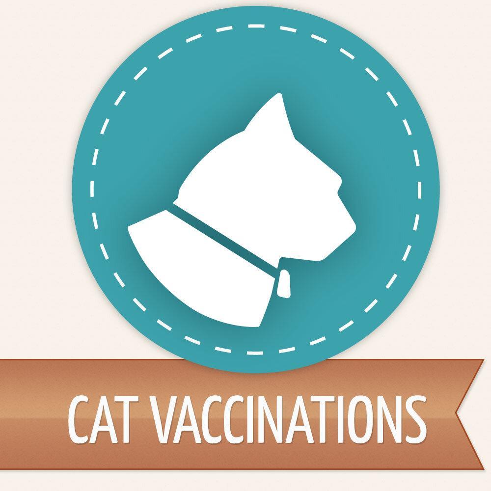 Cat FeLV Vaccination