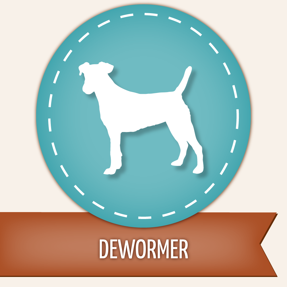 Dog Dewormer - Droncit